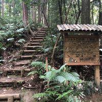 トトロの森、狭山湖、金乗院山口観音~コロナ禍の中、子連れ東京郊外散歩(2)~