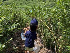 軽井沢 夏 2020 家族三代 3歳 8歳 子連れ旅行