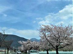 ☆美ヶ原高原王ヶ頭ホテル再訪☆春爛漫の信濃路('∀'r