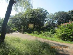 東小金井から野川の川沿い散歩を楽しみながら調布市深大寺へ