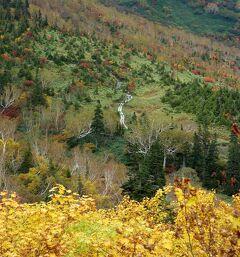 信州週末家出② 秋の栂池自然園 ~白馬三山を眺めながらカツサンドを食べる の巻~