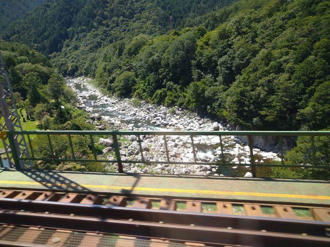先月福島県の鉄道を完乗しましたが、次はどこに行こうかと考えたところ岐阜県があと一度で完乗できそうなことがわかり行って来ました。<br /><br />以前であればJR東海のトクトク切符を使って御殿場線で出発することを検討するところですが、今は相模線沿線に住んでいいるので中央本線経由で出発しました。<br /><br />岐阜県の鉄道を完乗する以外に目的もなく、写真も少なめですが中津川駅で財布を落としヒヤッとした記憶に残る旅になりました。