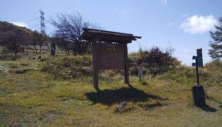 20-旧中山道 和田峠口~和田古峠~下諏訪宿近く(10/2 16.8km 33600歩 )