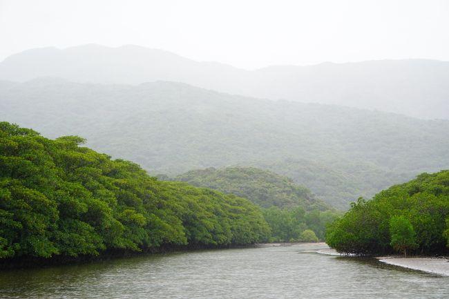 夏休みはドバイの予定でしたがコロナの影響でもちろん中止。<br />7月予定の夏休みを9月に移動しても海外は無理。<br />リゾート気分になれそうな離島に行ってみようかな。<br />離島は初めてだし、海のきれいな石垣島。<br />一人で行くのも行きづらいところですが、じゃらんで検索してたら一人旅応援プランを出しているホテルを発見。<br />これなら行けるかなと予約しました。<br /><br />当初はGo toが使える予定でぽちっとしましたが、後で東京除外ーーー<br />私にとっては高額な旅。。。<br />補助は受けられませんが、go toが始まったら軒並み価格上昇してしまったので取り直すこともできずそのまま決行しました。<br /><br />マリンスポーツはしないし、ペーパードライバーだし。<br />どう過ごすかノープランの、ただただ青い海と空が見たくて選んだ旅です。<br /><br />9/26 JTA0073<br />9/30 JTA0070<br />ホテル エグゼス石垣