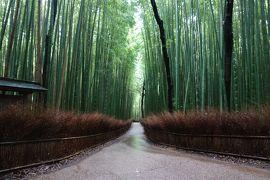 京都2泊3日王道の旅3日目