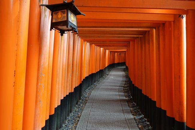 平日の2泊3日で巡る京都の旅。初日は伏見稲荷大社と宇治平等院を訪ねます。