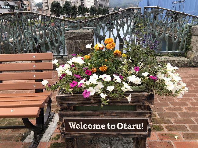 祝GoToトラベル東京追加!!(((o(*゚▽゚*)o)))♡<br />待ってました、この時を!<br /><br />最初の土日は予定があり、旅行の計画は無理だったので翌週の10/10~10/11に早速3年ぶりの北海道へ行ってまいりました。<br /><br />急な予定だったので母でも誘おうかと思っていたのですが、職場の人が人生で1度も飛行機に乗ったことなく、もちろん北海道にも行ったことないとのことで、せっかくの機会だし!とお誘いしました。<br /><br />ツアーはJALパック利用、1人23100円。<br />これに地域共通クーポンが11000円(1人5500円分)もらえるので、ホテル(朝食込み)往復航空券付きで実質18000円を切りました。。<br /><br />10/10(土) JAL513 HND11:35→CTS13:05<br />10/11(日)JAL518 CTS16:45→HND18:25