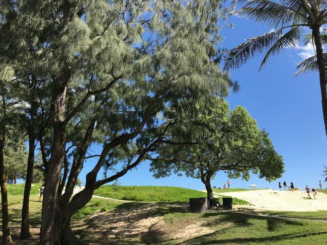 JALのマイレージが少し貯まったので、妻、息子、娘、海外デビューです。<br />日本の良い所もたくさん行きましたが、ハワイはハワイでいいですね。<br />独特な魅力、ゆっ~くり、まっ~たりな感じ( ̄▽ ̄)。<br />写真をいっぱい撮ったので何回かに分けて書きたいと思います。