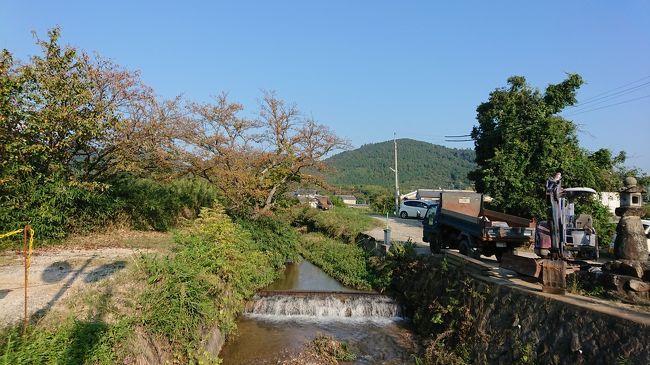 横浜の男友達からラインが来て、近々奈良県の三輪山に登ろうと思うので、一緒にどうぉ?とお誘いが。<br /> 4年前にあっさりとこの世を去ってしまった友達が紹介してくれて、私と彼は健全な友達のままの関係を継続中。3年前の今頃は確か、青春18切符で横浜から私の実家の三重県伊賀市にやって来たので、「まあ古民家にでも泊まっていってよ」で築100年越えの我が家に泊まって、一緒に上野城と忍者屋敷を見て帰って行った。その当時も人間関係で疲れ果てていたが、今回はコロナの影響でやっぱり将来どうなるのか、、、な不安感や生活の質の劣化などで、待ち合わせの天理駅から私が先に奈良駅から乗ってきたまほろば線の電車内で2年ぶりに対面した時には、顔面蒼白で、2年前より太って、なんか二日酔いでゲロ吐きそうな表情で、絶対どっか病気だろ!と突っ込みたくなるくらいの不健康オーラが漂っていた。<br /> 前日まで三輪山の後、箸墓古墳も見に行こう!とラインでウキウキやりとりしてたが、大丈夫だろうか?<br /> 正直、先月の曽爾高原で彼氏の足手まとい状態になっているデート中女子を見ていたので、なるべく足手まといにならないよう、ジムでハム筋を鍛えていたんだが。。。<br /> 私はコロナ貧乏。是非とも三輪山に貧乏神を置いてけぼりにして、福の神様を拾いたいです!