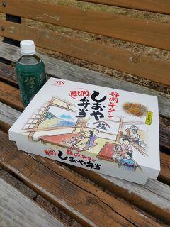 三泊三日で東京へ.。.:*・゚★*:.。良い季節なので車中泊&サービスエリアの美味しいもの