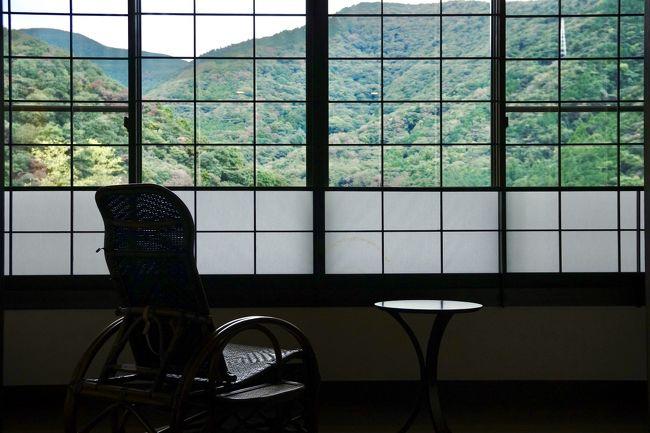 東京からのGoToトラベル解禁!コロナ疲れの心と体を癒しに、箱根湯本へ温泉旅行することにしました。<br />少し前に夫婦でファスティング(断食)をしていたこともあり、食事に気を使ったお宿「養生館はるのひかり」さんを選びました。<br /><br />旅行中は消毒、マスク着用、三密を避けるなどの「新しい旅のエチケット」で、これまでとは違うけれど、ちゃんと楽しめました。<br />夫婦2人2泊で9千円の地域共通クーポンは、現地でたっぷりお土産を買って消化してきました。お得です!