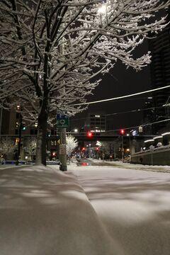 真冬のアメリカ 寒い時には寒いとこへ2「普段はこんな大雪降らないんだけど!!非常事態宣言のシアトル編2/8昼~2/9早朝」