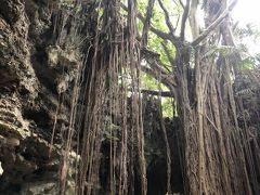2020年10月 GotoTravel 沖縄本島1日目 ガンガラーの谷で古代にロマンを馳せ、斎場御嶽で厳かな雰囲気に浸る