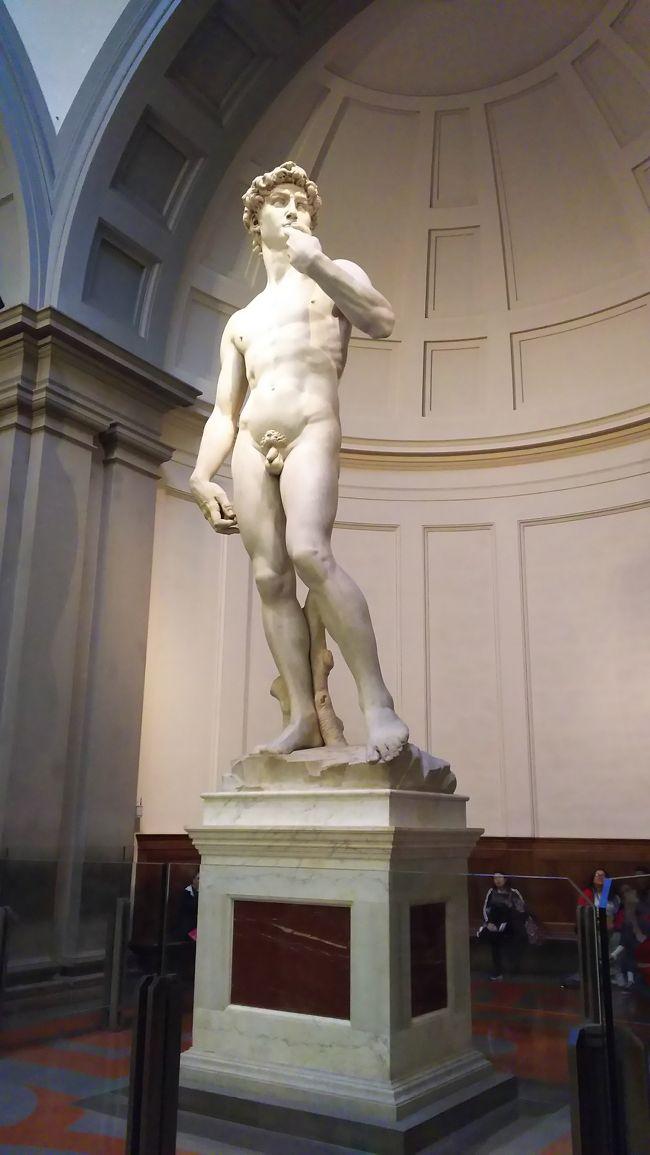 パート13のつづきです。<br /><br />夕食を食べたあとはホテルに帰り、翌日はアカデミア美術館にいきました。<br /><br />有名なダビデ像をみてきました。