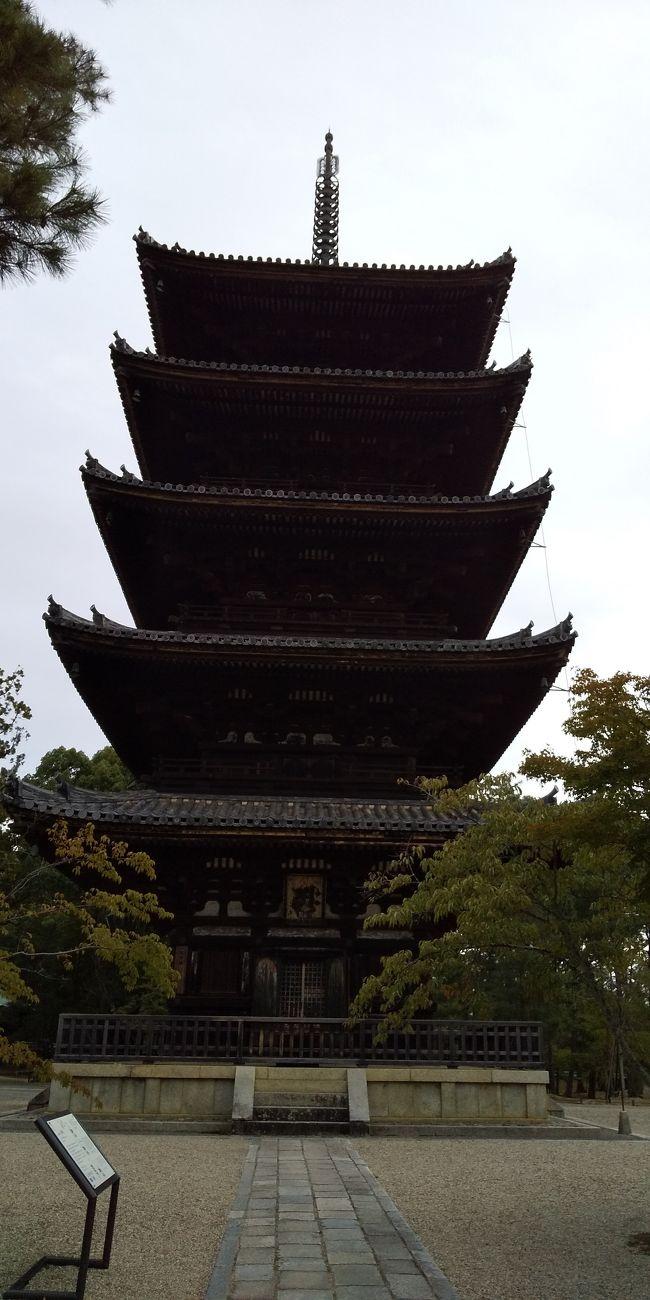 小学生の頃に初めての京都。<br />そして、修学旅行。<br />それから、あと、2~3回くらいきたかな?<br />改めて、京都旅行を楽しみました。<br />1泊2日の短い旅行。どれだけ楽しむことができるかな?<br />写真、仁和寺の五重塔<br />
