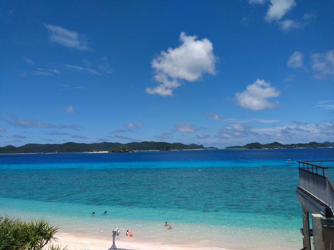 今年のお盆休みはコロナの影響もあって<br />8月11日も臨時休暇となり、8月8日~16日までの9日間!(+1日の有休)<br />定宿のキャンセルが出て、当初7日間の日程を9日間に延長し<br />4年連続の阿嘉島へ行きました。<br />出発日は沖縄の台風の影響で波乱!?の幕開けとなりましたが<br />旅程が長かったこともあり、非常にゆっくりできたお盆休みでした。<br /><br /><br />旅程<br /><br />1日目 スカイマーク517・521便欠航の為、蒲田泊<br />  <br />2日目 HND8:40発→OKA11:30着(BC513)<br /><br />    那覇市内散策<br /><br />3日目 フェリーざまみで阿嘉島へ<br /><br />    泊港10:00発→阿嘉港11:30着<br /><br />    島内散策<br /><br />4日目 阿嘉ビーチ&ヒズシでのんびり<br /><br />    Iさん合流<br /><br />5日目 北浜ビーチでのんびり<br /><br />6日目 村内航路みつしまで座間味島へ<br />    <br />    阿真ビーチでのんびり<br /><br />7日目 ヒズシ&クシバルでのんびり<br /><br />    Kさん合流<br /><br />8日目 北浜ビーチでのんびり<br />  <br />    フェリーざまみで那覇へ移動、納会!?<br /><br />    阿嘉港発15:00発→泊港16:30着<br /><br />9日目 ダイアモンド・プレミアラウンジでゆっくり<br /> <br />    OKA14:05発⇒HND16:45着(JL910)<br />   <br />    帰京<br /><br />旅費<br />    <br />   【交通機関】<br /><br />    羽田⇒那覇(SKY)¥10,210(いま得)<br /><br />    那覇⇒羽田(JAL)¥20,910(ファーストクラス)<br />    <br />    那覇泊港⇔阿嘉港(フェリーざまみ)¥4,030<br /><br />    阿嘉港⇒座間味港(村内航路みつしま)¥300<br /><br />    座間味港⇒阿嘉港(フェリー座間味)¥200<br /><br />   【宿】<br />     <br />    ビジネスホテルソーシャル蒲田 1泊¥2,480<br />    <br />    ホテルリブマックス那覇泊港 2泊¥5,842<br /><br />    民宿ナーレーラー 5泊¥41,400<br /><br />