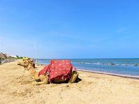 2019年冬:エリトリア紀行 ―「紅海の真珠」マッサワのビーチリゾートと、途中下車の旅!―