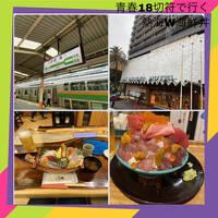 静岡休日乗り放題きっぷとGOTO熱海デカ盛り海鮮丼と地ビール温泉ひとり旅