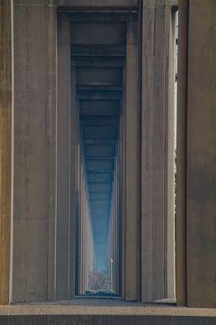 回顧録 若者と行く南京 Vol.7 二日目、南京長江大橋