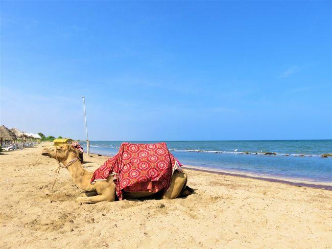 前回のアスマラ1日観光を終え、「紅海の真珠」と謳われる紅海沿岸の古都、マッサワに向かいます。<br />マッサワはエリトリア最大の港湾都市であり、古くから交易の拠点として栄えてきたことで知られていました。現在では美しい紺碧の海を利用したリゾート都市としても知られている他、ここも他のエリトリアの都市同様にイタリア時代の建築が多く残っています。しかし、独立戦争時には激しい戦闘や爆撃が行われ、その結果貴重な建築の多くは破壊されてしまい、旧市街は大きな損害を受けました。現在は復旧が進んでいる場所もあるものの、戦争遺産として「意図的に」そのままの状態で放置されている建造物も多く、見るに痛々しい印象を受けます。<br />また、マッサワ周辺は珊瑚が豊富で、マッサワの旧市街自体も元々は珊瑚で出来た島でした。豊富な珊瑚を使ってブロック状に削り、珊瑚のブロックで建造物を作っていったのです。その一部は現在でも見ることが出来ます。島であったマッサワ旧市街とタウルド(ホテル街)を繋ぐ橋はイタリア支配期にようやく作られました。イタリア植民地時代には南紅海のアッサブに次いでイタリアの拠点となった町として知られ、エリトリア最大の港として、そしてイタリア海軍の紅海艦隊の母港としても重要な拠点として機能し、第二次世界大戦でも英海軍と激しい戦いを繰り広げています。そのため、沿岸部には第二次世界大戦時や独立戦争時に沈んだフネを見ることが出来、タウルドのホテル街からも一部を確認することが可能です。<br /><br />マッサワだけでなく、アスマラ-マッサワ間の様々な小都市にも途中下車の旅をしました。特に魅力的な場所は、ドガリDogaliでしょう。エリトリア戦争(イタリアがエリトリア獲得のためにエチオピアと戦った戦争)では激戦地となったことで知られており、その名は首都ローマの広場や軍艦の名前にもなりました。おそらく、ここのイタリア軍慰霊碑を訪れた最初の日本人になれたと思います。<br /><br />旅の道のりは以下の通りです。<br /><br />12月11日(水)<br />夕方、エリトリア到着→アスマラ泊<br /><br />12月12日(木)<br />アスマラ1日観光、アスマラ泊<br /><br />12月13日(金)<br />アスマラ(マアカル地方・中央州)→マッサワ(北紅海州)途中下車の旅<br />アスマラ→ネファジット→ギンダ→ドンゴロ→ガフテレイ→マイ・アタル→ドガリ→マッサワ<br />マッサワのビーチで海水浴、その後マッサワ市内観光、マッサワ泊<br /><br />12月14日(土)<br />マッサワ(北紅海州)→ケレン(アンセバ地方)<br />朝のマッサワ散歩、昼ケレン着、ケレン市内観光<br />ケレン(アンセバ地方)→アゴルダト近郊(ガシュ・バルカ地方)→アスマラ(マアカル地方・中央州)<br />夕方アスマラ着 アスマラ泊<br /><br />12月15日(日)<br />エリトリア鉄道乗車予定日→10人以上集まらず観光列車が発車せず<br />アスマラ市内ぶらり旅<br /><br />12月16日(月)<br />午前:アスマラ→エリトリア鉄道・ドゥルフォ通信所見学<br />午後:エリトリア鉄道・アスマラ駅構内車両基地見学<br /><br />12月17日(火)<br />出発までアスマラ市内でお土産ショッピング<br />18時、アスマラ出発→アディスアベバへ<br /><br />12月18日(水)<br />帰国<br /><br />