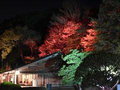 夜遊び(2) 北広島