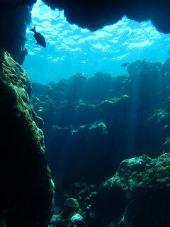 宮古島は日本のセノーテ!! 宮古島の地形ダイビングを楽しんで来ました。