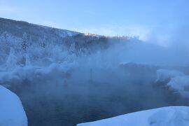 真冬のアメリカ 寒い時には寒いとこへ5「やっぱ冬は温泉よね♪チェナホットスプリングス編2/10」