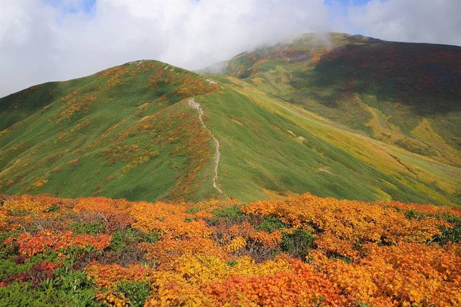 10月2日に山形の月山へ日帰り登山に行ってきました。<br /><br />ちょうど紅葉のピークで、真っ赤に染められた稜線と黄金色の湿原が素晴らしい景色でした。<br /><br />平日でしたが人も多かったです。姥沢ルートであればリフトを利用して登ることもできます。<br /><br />▼ブログ<br />https://bluesky.rash.jp/blog/hiking/gassan3.html
