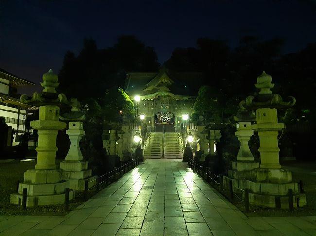 出張に出ても、その地元について知りたい!楽しみたい!そう思うのが旅好きの常…<br />ですが、やはり日中は出張となると、どうしても外に出られるのは夕方から夜になってしまい、かなり開いているところも少ないです。<br /><br />今回は、時間の制約をくぐり抜けながら成田駅周辺を歩いてみた旅行記です!