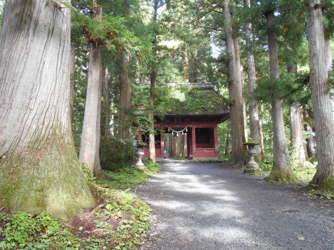 トレッキングを兼ねて戸隠神社五社参りをしました。<br />戸隠は静かでいいですね。自然のやさしい感じがして、おだやかな散策ができました。