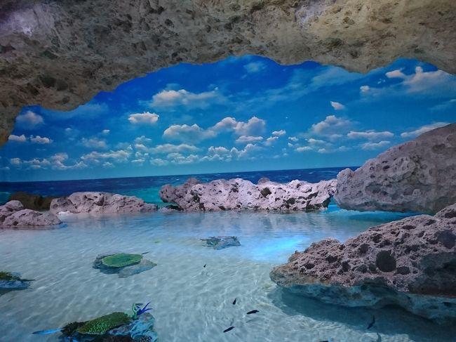 しまんちゅでびゅー?'20秋の琉球グスク、かりゆし水族館! ルネサンスリゾートオキナワに泊まる!