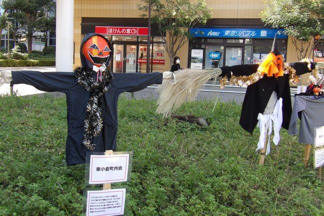鹿島田駅前のパークタワー新川崎のバス通り沿いの小さな広場にはハローウィンの仮装人形が飾られている。各町内会などが制作したものである。しかし、今年は新型コロナウィルス感染症の拡大が続いており、ハローウィンが例年のように盛り上がるとは思われない。そうであるならば、このような形でハローウィンを迎えるのも一つのやり方であろうか?<br />(表紙写真は鹿島田駅前のハローウィンの仮装人形)