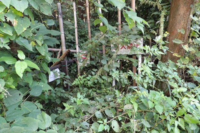 上永谷町境の山道(https://4travel.jp/travelogue/11651228)から野庭町(上野庭)の谷戸の中腹に下り、小山台に通じていた山道は小菅ヶ谷北公園散策の森ゾーンで消滅ししている。それにしても、小菅ヶ谷北公園から下の小さな谷戸のU字型の道路で囲まれた畑の横に出るであろう山道は何と急な谷を下りて行くのだろう。その急勾配のために、今の時代では通る人がいなくなってしまったのであろうか?<br />(表紙写真は小菅ヶ谷北公園散策の森ゾーンで閉鎖された山道)