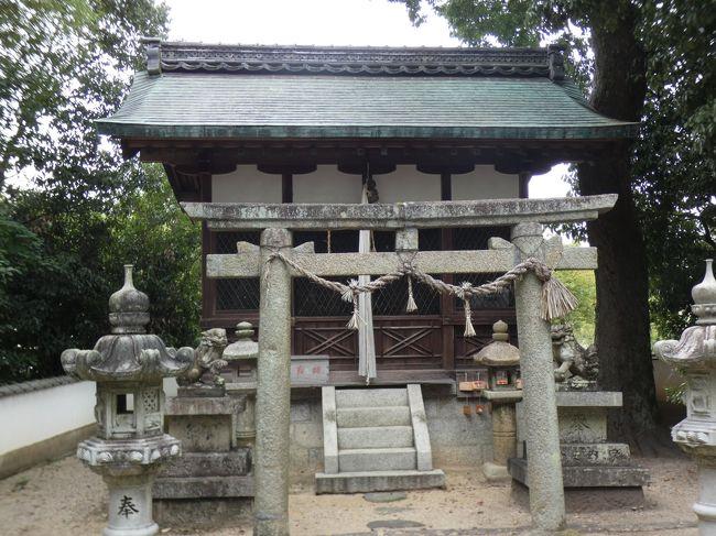 京都 京田辺 三山木地区南(Miyamaki South, Kyotanabe, Kyoto, JP)