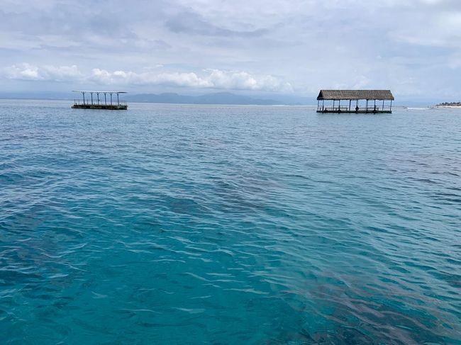 サヌールからファストボートでレンボンガン島へ。<br />たくさんのお客さんがいらっしゃって、予想以上にびっくり&#128518;<br />久しぶりに見れた光景に、明るい未来を想像して楽しい気持ちになりました&#128516;&#128516;&#128516;<br /><br />レンボンガン島の海の透明度は高くて綺麗ですね。