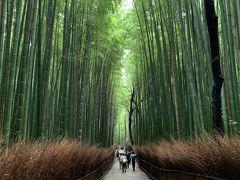 2020.10月 京都 大人女子旅 京都は美しかった