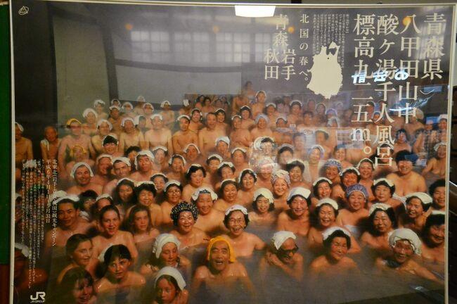 酸ヶ湯温泉旅館は江戸時代から300年以上続く湯治場で、1954年には国民温泉第1号に指定された名湯です。<br />昔の共同浴場は混浴が当たり前でした。<br />ところが昭和23年、旅館業法が施行されてから混浴の浴室は新たに開設出来なくなり、現存しているのはそれ以前から存在するものだけになりました。法律運用上のいわゆる「お目こぼし」です。**<br />だから一旦混浴をやめたら二度と元には戻れません。「既得権」です。<br /><br />家族、カップル、夫婦で温泉旅行に行ってもお風呂は別々、和気あいあいと一緒に入りたかったら貸切風呂を借りるか、風呂付の部屋に泊まるしかありません。<br />でも旅館自慢の広々とした大浴場に入りたいですよね。<br /><br />酸ヶ湯温泉も現代のニーズに応えるため改良を重ねていて、女性にとっても安心して入れる敷居の低いものに変わってきています。<br />いわば「旅館の混浴では理想に最も近い」システムだと思います。<br /><br />ここではその観点を主体に旅行記をまとめてみました。<br /><br />*写真は平成6年にJR東日本作成のポスター<br />**旅館と公衆浴場(銭湯、スパ等)とでは準拠する法律が異なるので、規制内容がちがいます。公衆浴場ではたとえ貸切浴室でも10歳以上の男女が一緒に入浴することが禁じられています。<br />障害者の介護で異性が一緒に入る場合、介護者は服を着ていなくてはいけない決まりです。