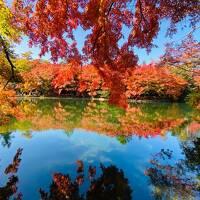 ☆紅葉シーズン真っ只中の軽井沢へ~『軽井沢マリオットホテル・ノースウイング温泉ビューバス付』(*^^*)娘達を連れて~