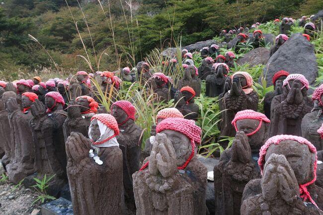前夜に青森旅行から戻り、残り1日となったJR東日本「大人の休日倶楽部パス」を使って日帰りで那須の自然を満喫してきました。<br /><br />午後は那須ロープウェイ行き路線バスに乗って移動。那須岳は3年前に登ったので(ロープウェイで^^)今回はパスして途中下車。つつじ吊橋から殺生石まで遊歩道を下って鹿の湯でひとっ風呂、48℃の浴槽にもチャレンジしてみましたが・・・