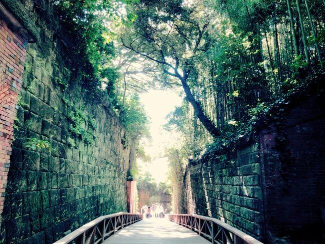 神奈川県にあって<br />東京湾に浮かぶ<br />唯一の無人島なんだって。<br /><br />『猿島』って。<br /><br />それだけでなんかワクワクする!<br /><br />最近、無人島生活をしつつ<br />無人島から自作のボートで脱出するっていう<br />テレビ番組の影響で<br />「無人島」ってワードに<br />食いついてきた息子と一緒に出かけてみよう!