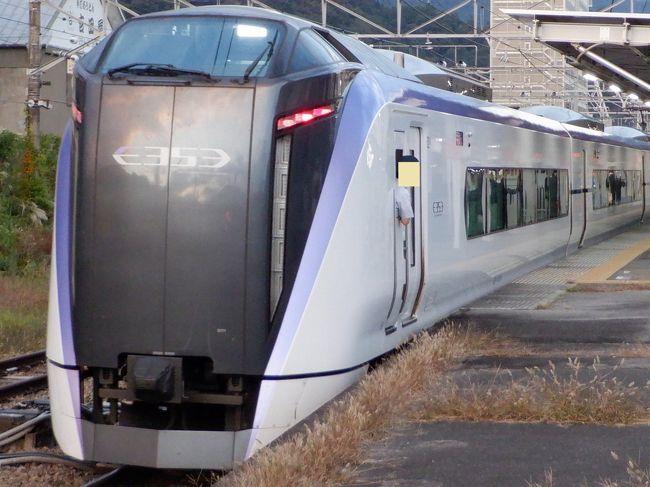 大月からはJR中央線の特急かいじ40号に乗って帰京しました。