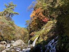 八ヶ岳山麓で紅葉狩り
