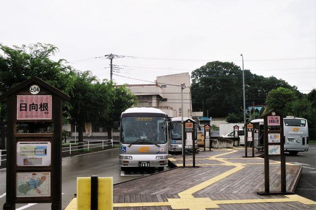 [秘境!路線バス乗り継ぎ旅 初日:前編] 業界初「ハブ&スポーク方式」を導入したイーグルバスと珍スイーツ「青なすジェラート」