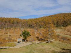 黄葉の入笠山と絶品お昼