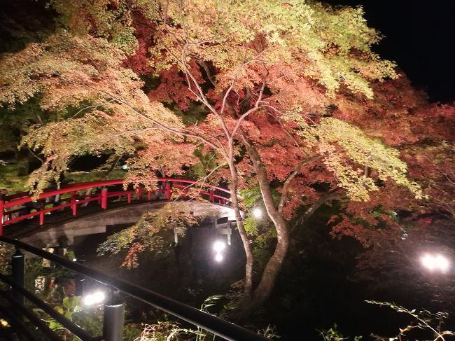 以前より行ってみたかった伊香保温泉。<br />特に伊香保の石段には興味があったので行ってみました。夜はノスタルジックな雰囲気で最高でした。<br />そして河鹿橋が現在ライトアップ中。幻想的な景色をありがとう!という感じでした(^^)