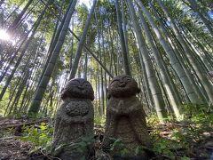 2020GoToトラベルで行く京都の旅③嵐山散策
