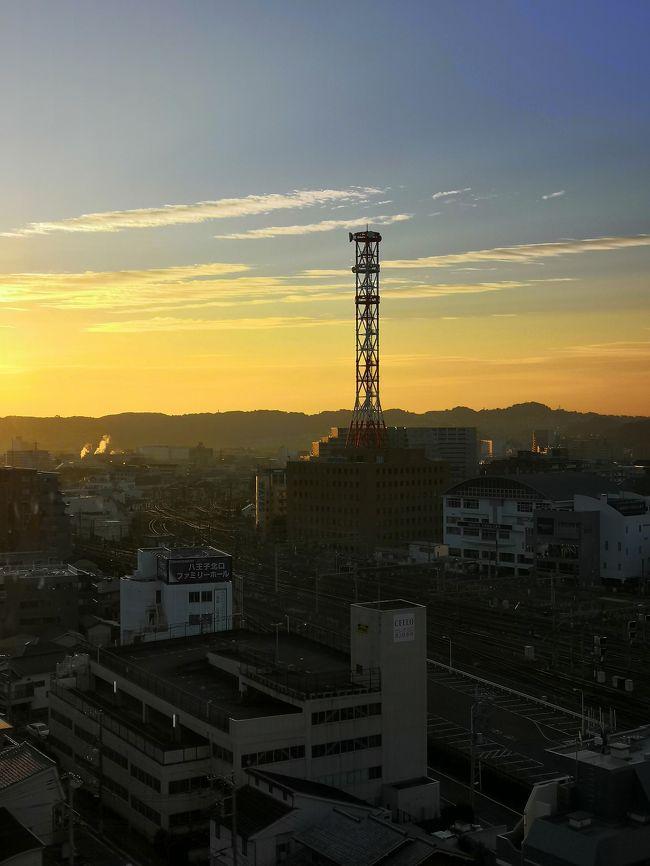 今回は 新宿で友人と 久しぶりのランチ。<br />コロナから 23区内、初の外食。<br />ついでに、ホテルに泊まることにしました。<br />東京に生まれ 東京で育ったけど 灯台下暗しで 知っているようで知らない東京<br />ちょっと行かない間に どんどん変わっていく東京<br />新しい発見が あります。<br />今回は go to travel go to eat もっと楽しもう TOKYO TOKYO 使って 激安の旅でした<br />ゆっくりするつもりが 意外にも時間がかかってしまい ドンキホーテで 1階から6階まで 見ているだけで 4時間かかってしまいました。<br />観光には程遠いけど こんなにじっくり ドンキホーテを見たのも初めてかもしれません。<br />しかし 地域共通クーポンの 電子クーポンは本当に使いづらいです。<br />トラブルもありました!<br />電子クーポンが2枚になってしまい 1回目は良かったのですが 2回目は レジで 操作ミス。<br />お店の人も 使い方を把握していないようで かなり時間がかかってしまいました。<br />2枚使ったと ナンバーをコピーして見せたりして 30分以上 かかってしまいました。<br />こちらも よく理解できていなかったので 悪かった点もあると思うのですが 都庁の方でも もう少し わかりやすい 誰でも簡単に操作できる クーポンにしてほしかったと思います。<br />また 電子クーポンは 使えるお店が凄く少なく 本当に扱いづらいです。<br />極力 紙クーポンにしようと 切実に感じました。<br />