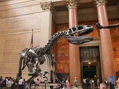 '19サラリーマンでも行けるアメリカ4「ブロードウェイは買い物天国&大都会のジュラシックパーク♪アメリカ自然史博物館編7/10PM」