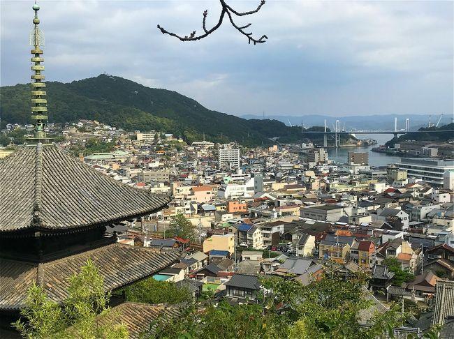 瀬戸内の陽光に包まれて…【3】猫の誘惑と坂の町、尾道編/広島県