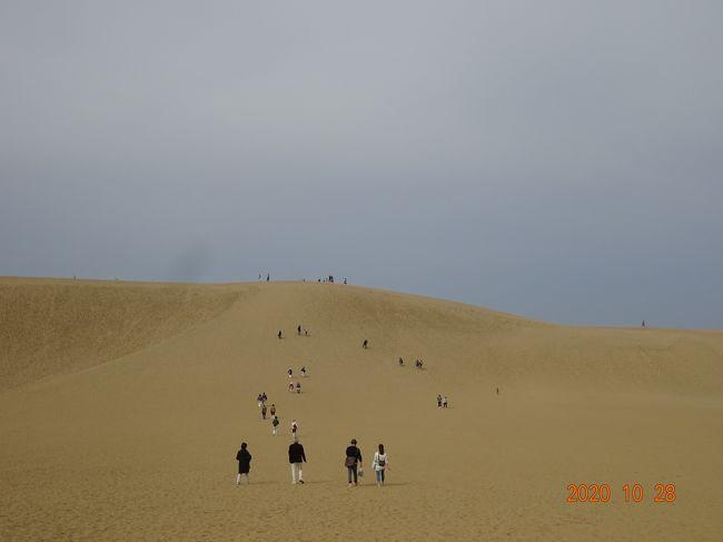 """その四の4日目は三朝温泉を出発後に最初に神話の""""因幡の白兎""""の舞台になった白兎神社を参拝しました。<br />その後に日本第二番目の大きさを誇る鳥取砂丘に立ち寄りウオーキングをしました。(日本一の面積を誇る砂丘は青森県にありますが、自衛隊の演習地になっています)<br /> 昼食後にはバスで長距離移動をし岡山県の倉敷美観地区に移動しました。倉敷といえば大原美術館ですが、時間が無く外観を見学するのみとなりました。<br /> 帰路も新幹線のグリーン座席を名古屋まで利用し、四日間の旅が終了しました。<br /><br />&lt;四日目の行程&gt;<br />ホテル(9:00出発)・・・白兎神社・・・鳥取砂丘・・・砂丘会館(自由昼食)・・・倉敷美観地区散策・・・JR岡山駅(バス走行距離245キロ)<br />JR岡山駅発18:26ひかり522号(グリーン車)JR名古屋駅着20:42"""